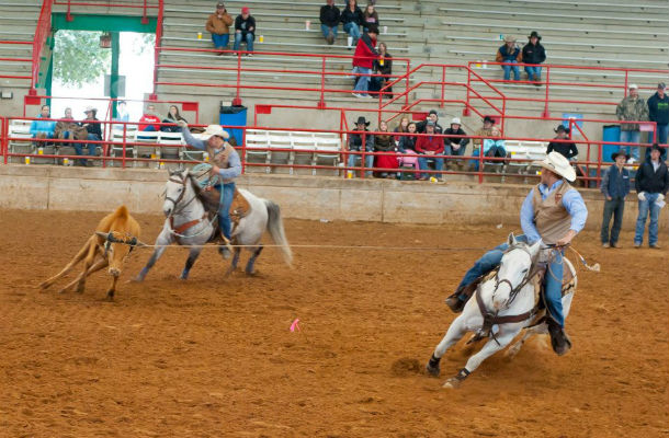 Wrapping up the TVCC rodeo
