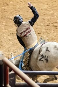 TVCC rodeo